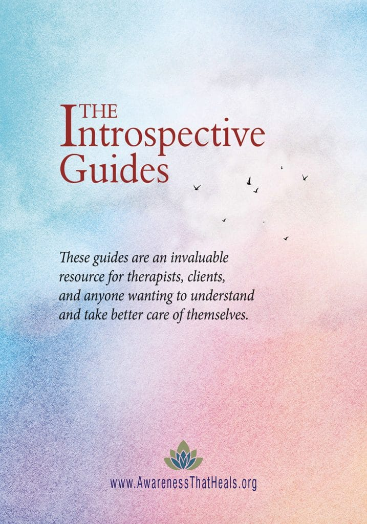 Introspective Guides - Cover